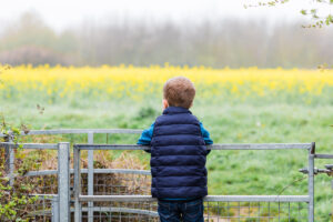boy looking out onto yellow fields