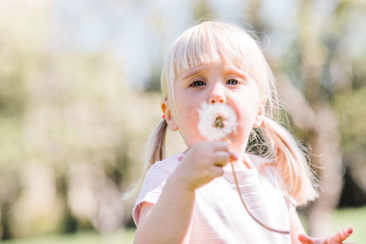 girl blowing dandelion clocks