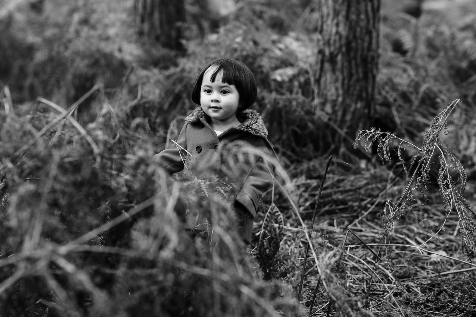 photo of toddler in the woods