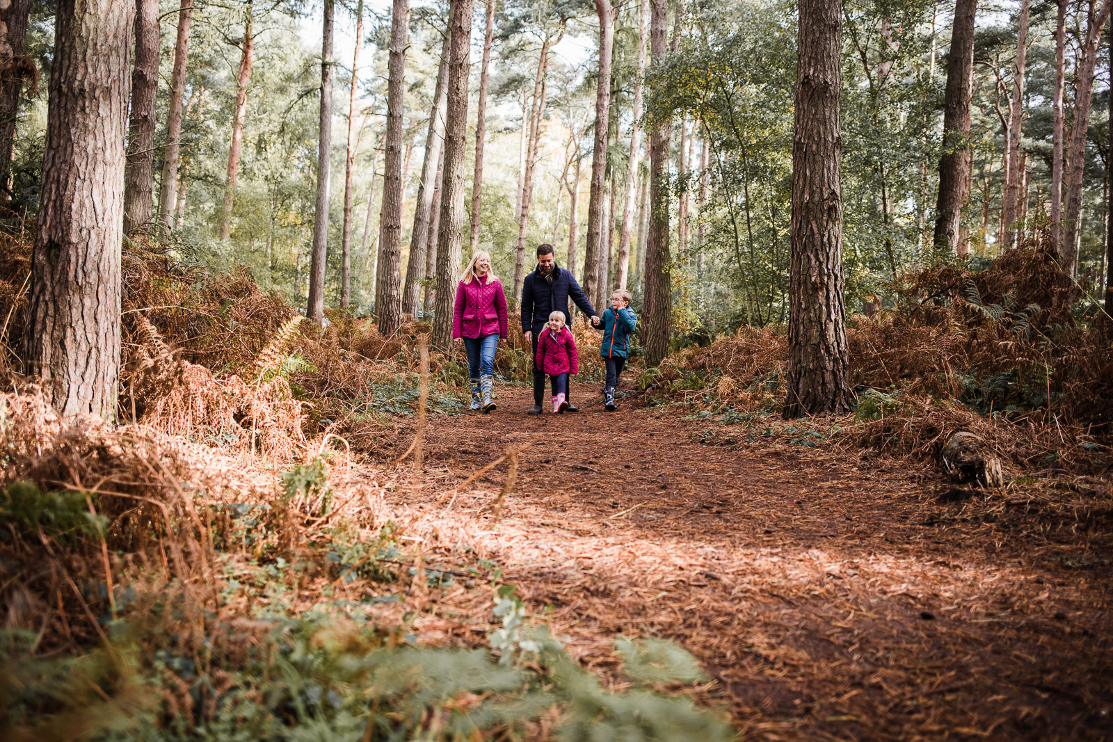 family walk in the autumn woods near Hitchin
